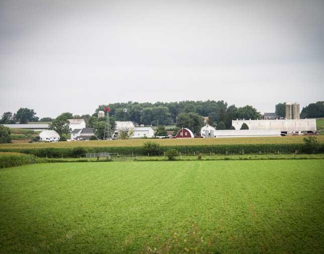 C.K. Stoltzfus Farm