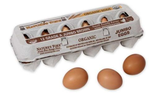Organic Jumbo Brown Eggs, 1 Dozen Pulp Carton Left Angle
