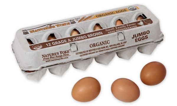 Organic Jumbo Brown Eggs, 1 Dozen Pulp Carton Left Angle