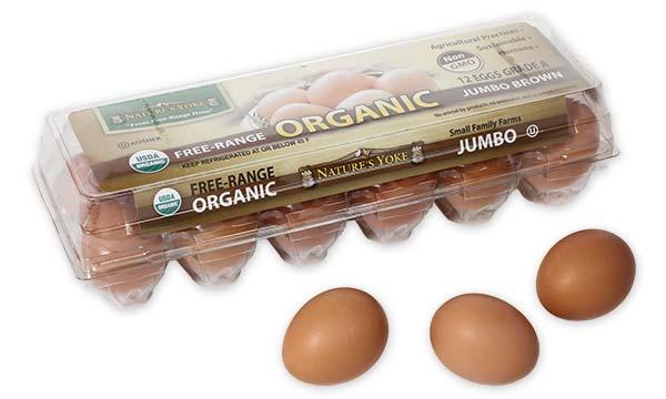 Organic Jumbo Brown Eggs, 1 Dozen Plastic Carton Left Angle