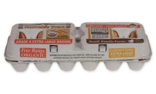 Organic Extra Large Brown Eggs, 1 Dozen Pulp Carton