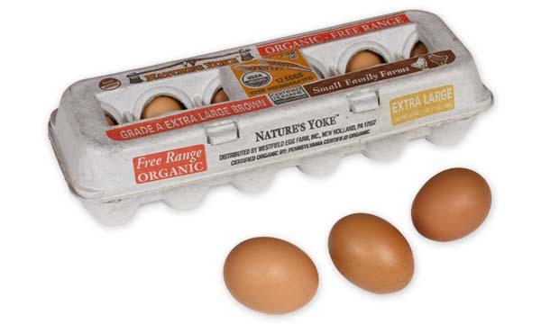 Organic Extra Large Brown Eggs, 1 Dozen Pulp Carton Angle 5
