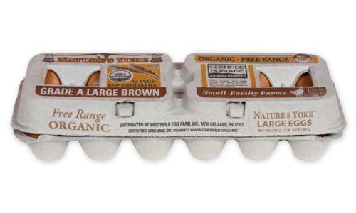 Organic Large Brown Eggs, 1 Dozen Pulp Carton