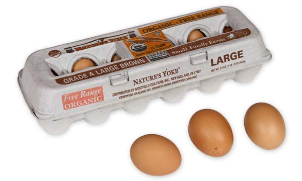 Organic Large Brown Eggs, 1 Dozen Pulp Carton Angle 5