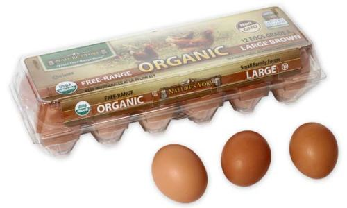 Organic Large Brown Eggs, 1 Dozen Plastic Carton Left Angle