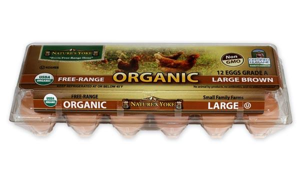 Organic Large Brown Eggs, 1 Dozen Plastic Carton