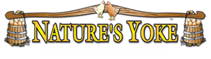 Nature's Yoke Eggs Logo