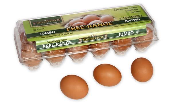 Free-Range Jumbo Brown Eggs, 1 Dozen Plastic Carton
