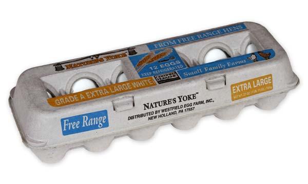 Free-Range Extra Large White Eggs, 1 Dozen Pulp Carton Angle 1
