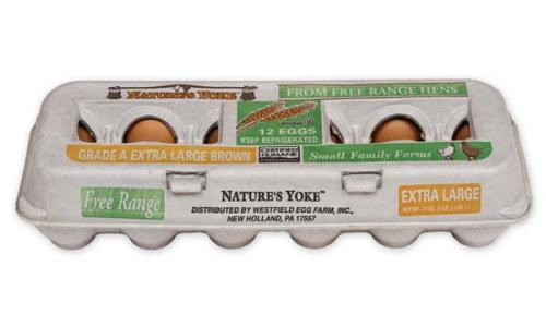 Free-Range Extra Large Brown Eggs, 1 Dozen Pulp Carton