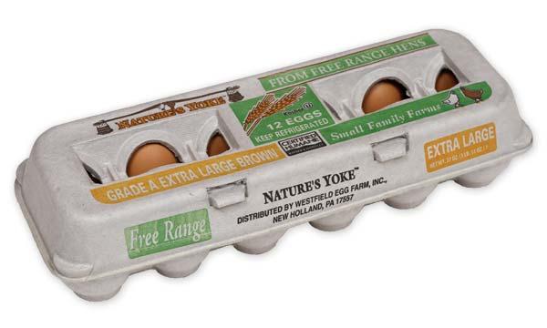 Free-Range Extra Large Brown Eggs, 1 Dozen Pulp Carton Angle 1