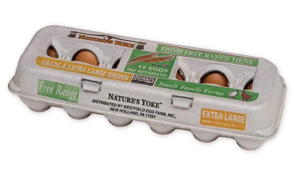 Free-Range Extra Large Brown Eggs, 1 Dozen Pulp Carton Angle 2