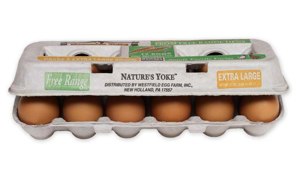 Free-Range Extra Large Brown Eggs, 1 Dozen Pulp Carton Angle 3