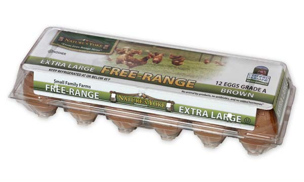 Free-Range Extra Large Brown Eggs, 1 Dozen Plastic Carton Angle 2