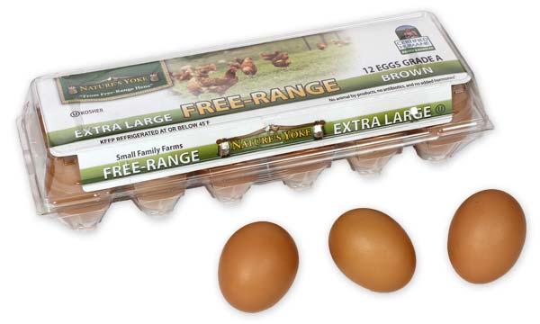 Free-Range Extra Large Brown Eggs, 1 Dozen Plastic Carton Angle 5