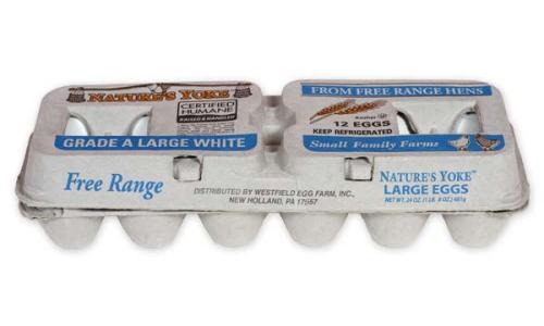 Free-Range Large White Eggs, 1 Dozen Pulp Carton