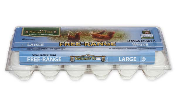 Free-Range Large White Eggs, 1 Dozen Plastic Carton