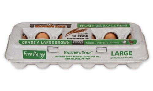 Free-Range Large Brown Eggs, 1 Dozen Pulp Carton