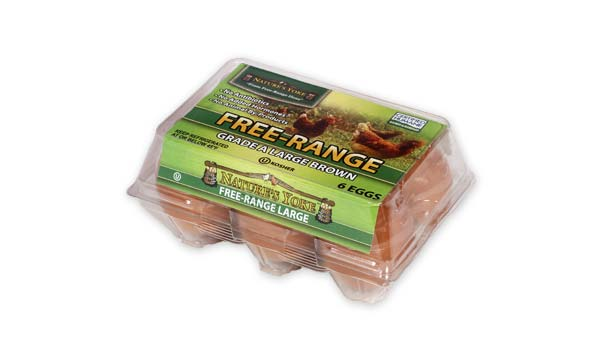 Free-Range Large Brown Eggs, Half Dozen Plastic Carton