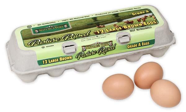 Pasture Raised Large Brown Eggs, 1 Dozen Pulp Carton