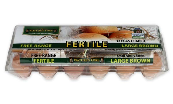 Fertile Large Brown Eggs, 1 Dozen Plastic Carton