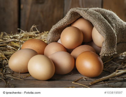 Public Service Announcement Regarding April 2018 Egg Recall