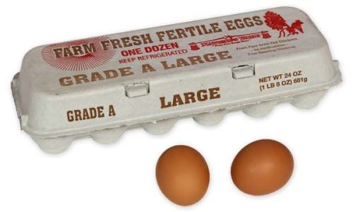 Farm Fresh Fertile Large Brown Eggs, 1 Dozen Pulp Carton