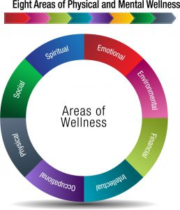 Health and wellness pie chart
